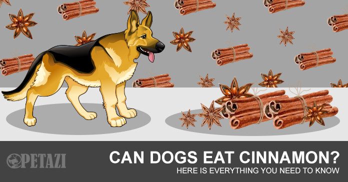 can dogs eat cinnamon - is cinnamon bad for dogs