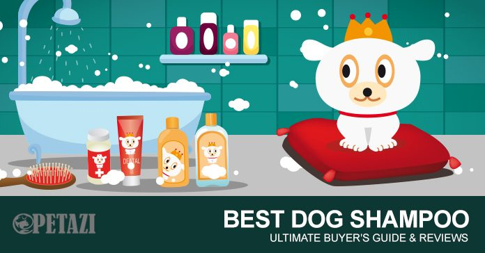 best dog shampoo - best shampoo for dogs