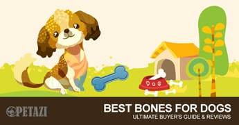best bones for dogs 2017 - Ultimate buyer's guide & review