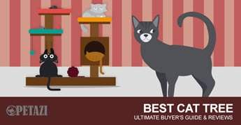 best cat tree 2017 - ultimate buyer's guide & reviews