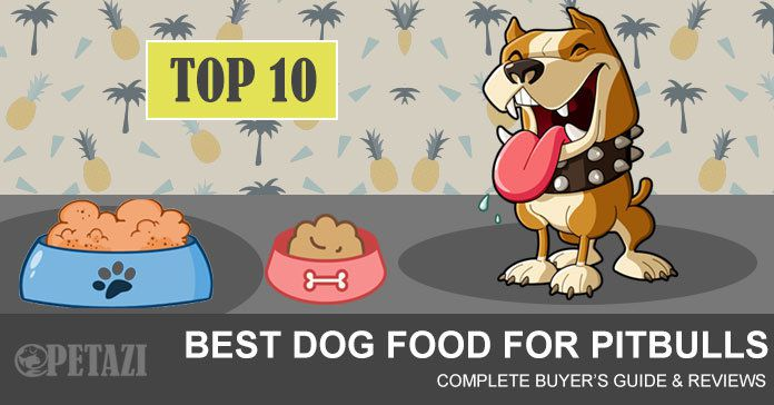 best dog food for pitbulls - ultimate buyer's guide & reviews