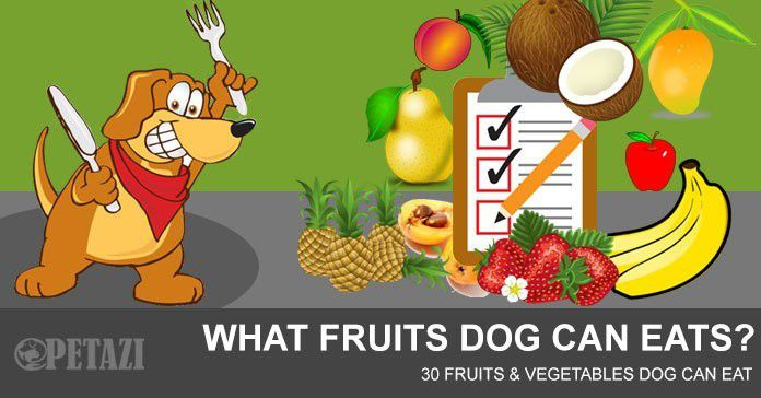 what fruits can dogs eat - 30 fruits and vegetables dog can eat