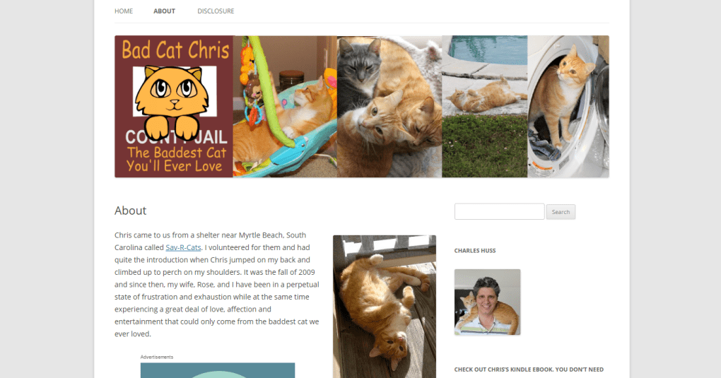 top-cat-blogs-17