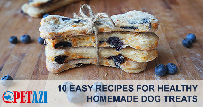 10 easy recipes of healthy homemade dog treats petazi