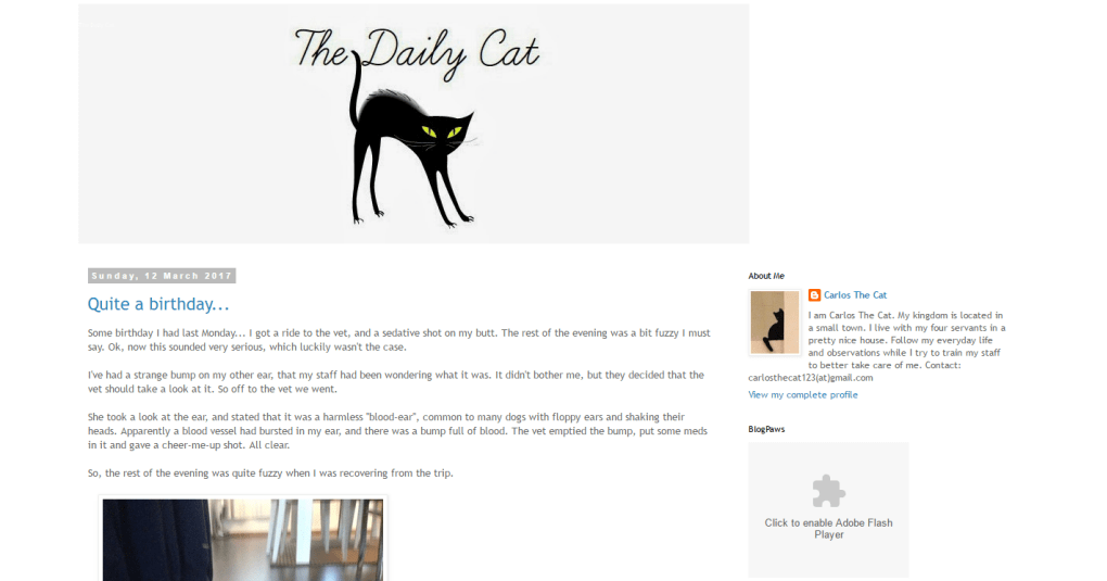 top-cat-blogs-25