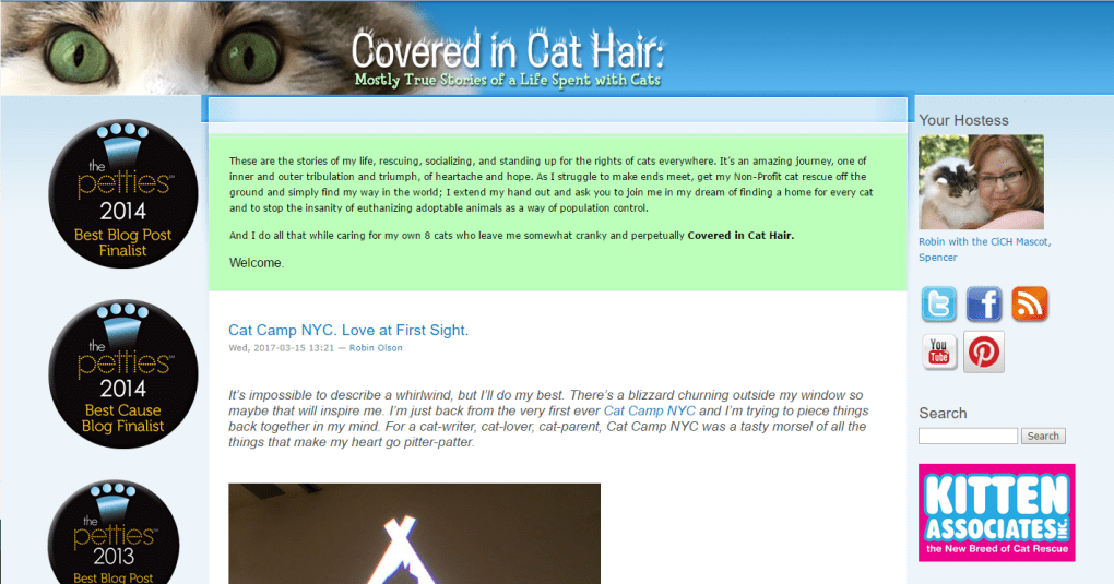 top-cat-blogs-7